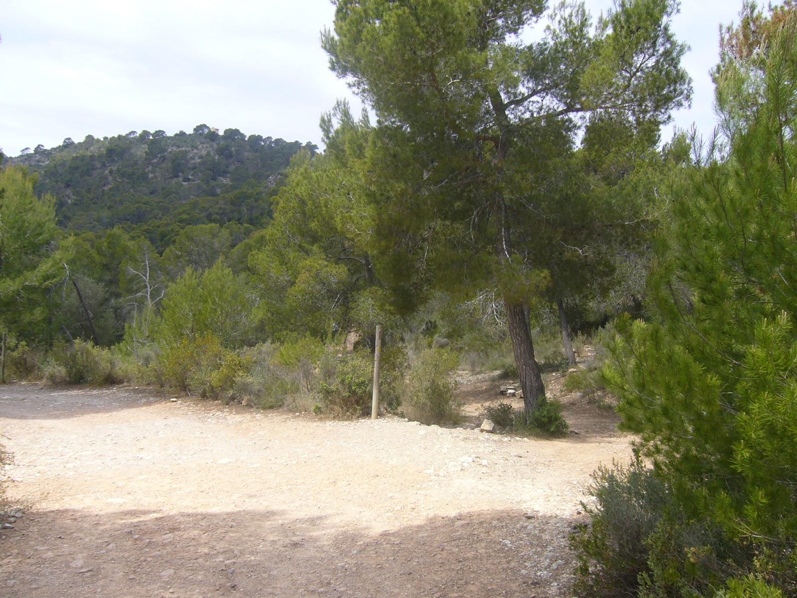 Mallorca Gutes Hotel Mit Kind
