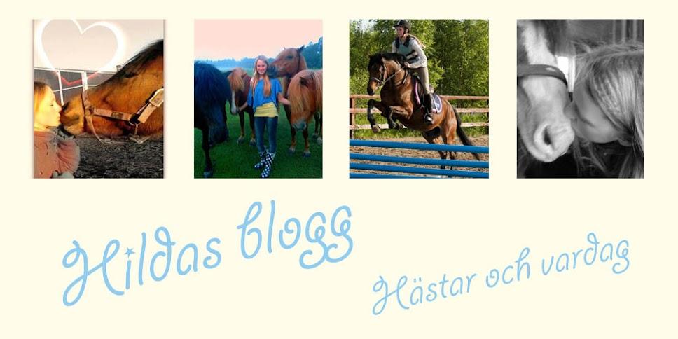 Hildas blogg! :)
