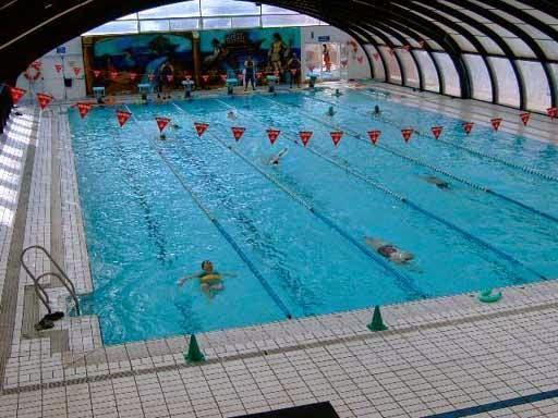 Ahorro de un 200 en coste de mantenimiento de piscinas con biomasa madera de pinares venta - Coste mantenimiento piscina ...