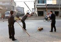 Οι 102 χώρες που ασκούν βαρβαρότητες στα ζώα