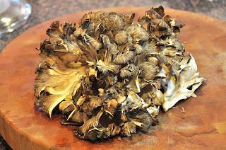 Mushrooms are commonly used to Pharmaceutical product such as Ganoderma lucidum, Maitake mushroom and Lentinula edodes.