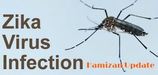 Zika Virus Disebarkan Oleh Nyamuk Aedes Aegypti