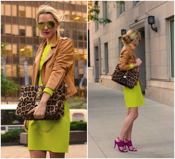 atlantic pacific neon leopard dress leather moto