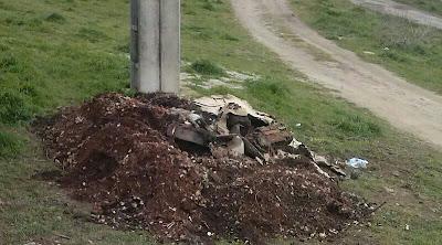 Restos del osario del Cementerio entre los que se encuentran restos humanos, en la vía pública