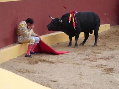 Esta foto marca el final de la carrera de Álvaro Múnera como torero matador . El muchacho se desplomó lleno de remordimiento en la mitad de la corrida cuando se dio cuenta de que el toro se negaba a pelear por su vida. Alvaro se ha convertido en un adversario ávido de lascorridas de toros.