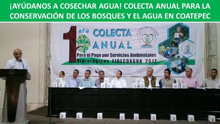 ¡AYÚDANOS A COSECHAR AGUA! COLECTA ANUAL PARA LA CONSERVACIÓN DE LOS BOSQUES Y EL AGUA EN COATEPEC