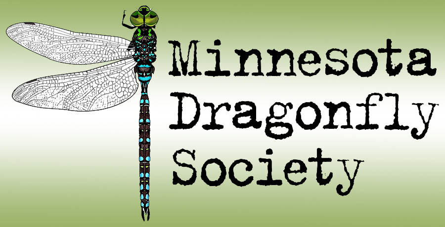 Minnesota Dragonfly Society