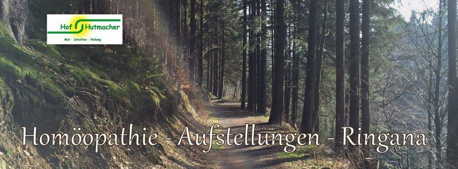 Hof Hutmacher - Mut, Intuition, Heilung