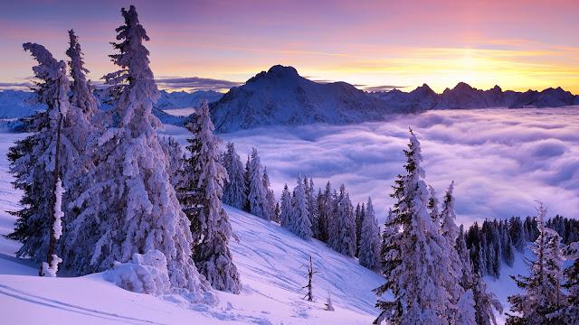 Purple Winter Sunset HD Wallpaper
