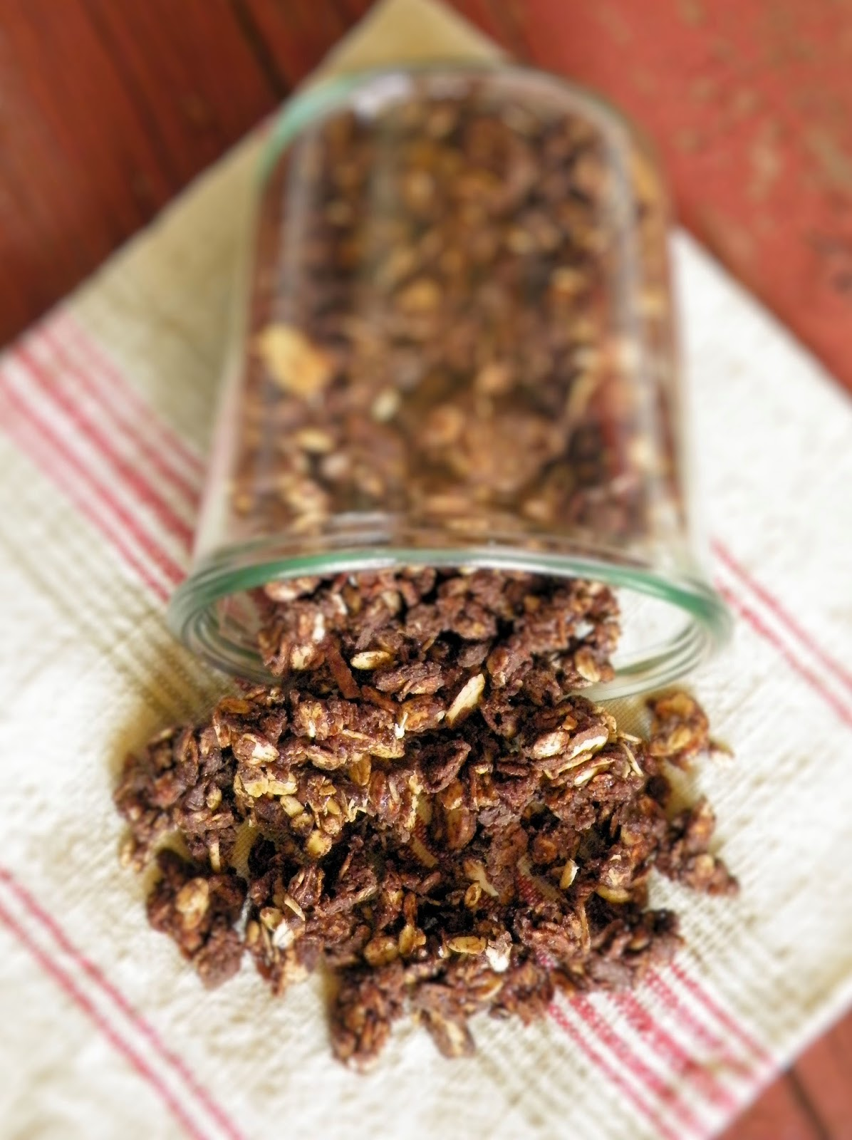 Vittles and Bits: Chocolate Almond Coconut Granola