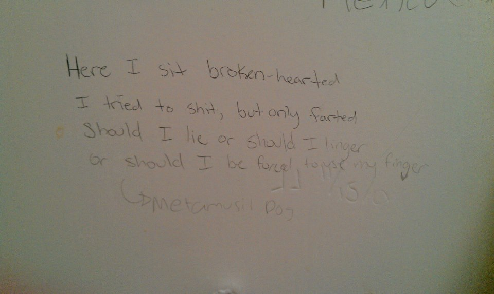 Random Thoughts And Other Lies Brought You By Bathroom Poetry - Bathroom poetry