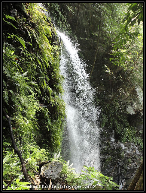 Incredible Waterfalls in Agumbe