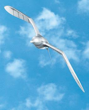 El Smartbird ...