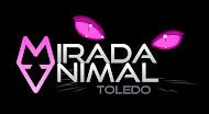 PROTECTORA DE ANIMALES DE TOLEDO