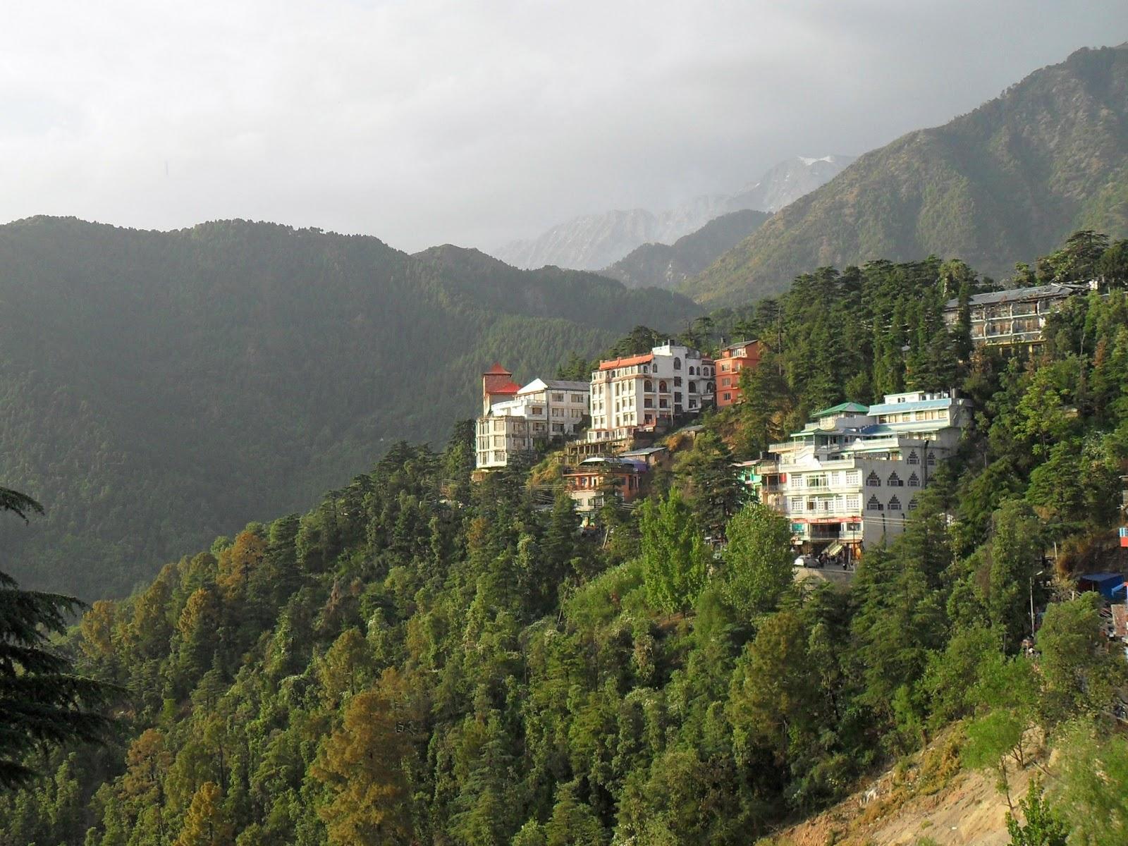 Дармсала. Вид из дворца Далай ламы