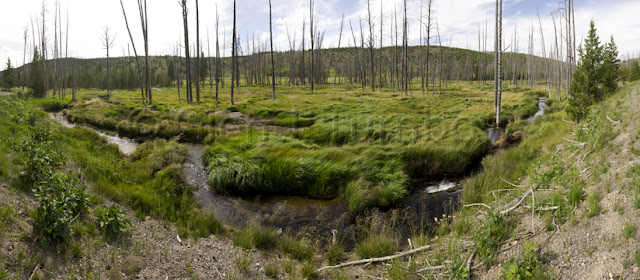 56 photo panorama - Valley near Beaver Lake, Yellowstone National Park