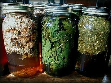 Herbal-icious Health