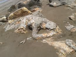 Ilustrasi: Batu Malin Kundang Si Anak Durhaka