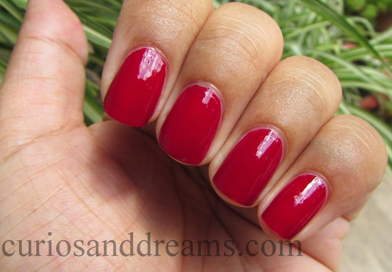 Lakme Color Crush Nail Polish 25 review, Lakme Color Crush Nail Polish 25,