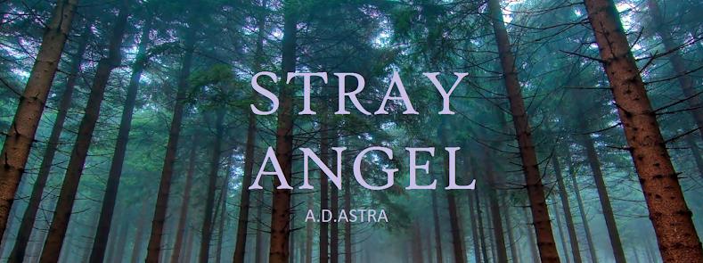 STRAY ANGEL