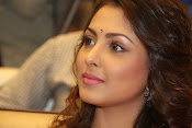 Madhu Shalini gorgeous looking photos-thumbnail-11