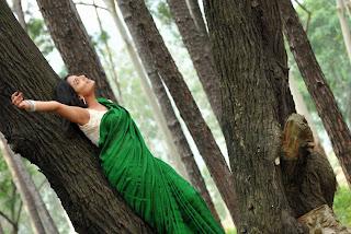 Actress-Nikitha-Narayan-high-resolution-Hot-Saree-Wallpaper-Photos_actressphotosgalleryhub.com_05.jpg