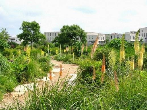 Passions sud jardins ecologie environnement un texte for Jardin quai branly