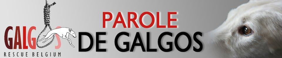 PAROLE DE GALGOS