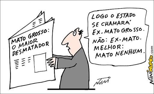Mato-Grosso: o maior desmatador