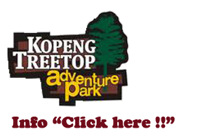 TREETOP PACKAGES