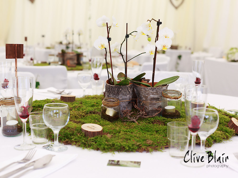 The Blossom Tree Woodland Wedding Rosliston Forestry Centre