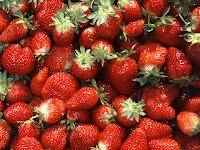 Teknis Budidaya Strawberry Organik