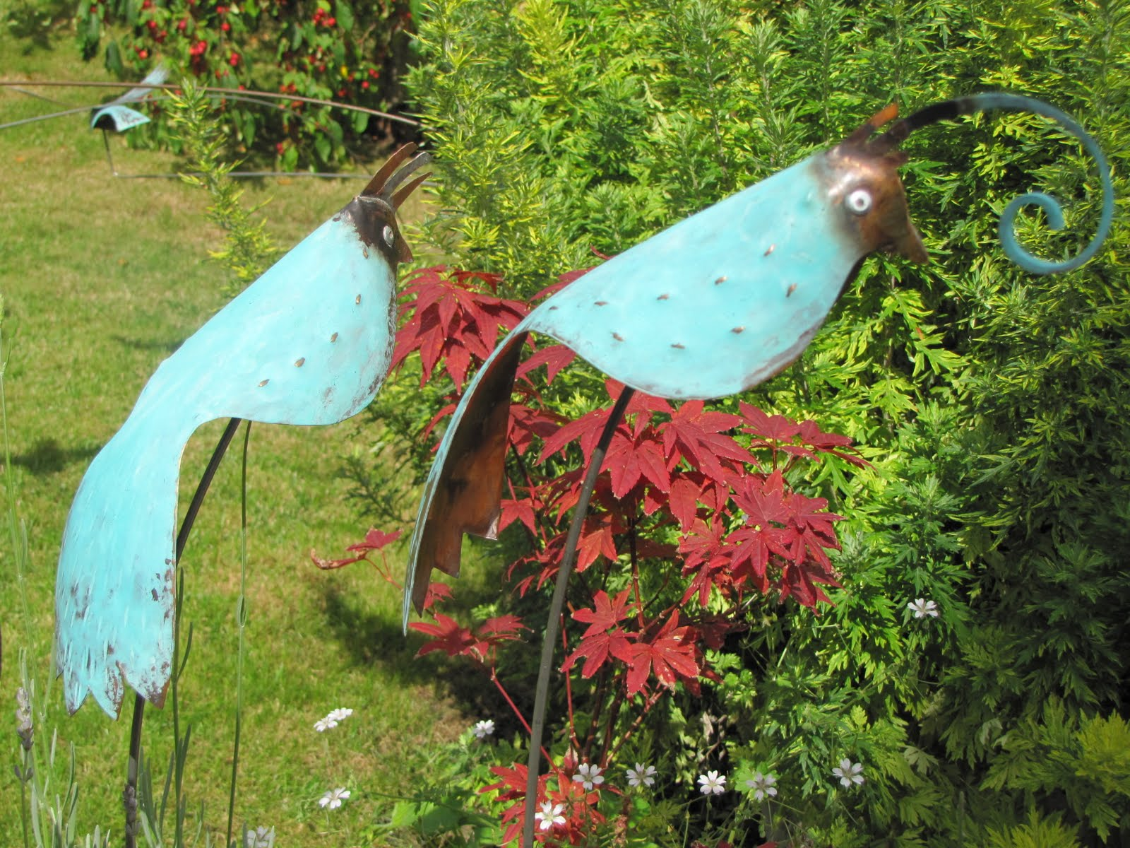 Perching Birds From £50 each.