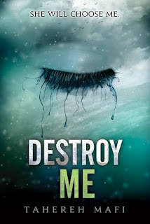 Destroy Me book cover