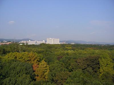 万博公園 展望タワーからの眺め