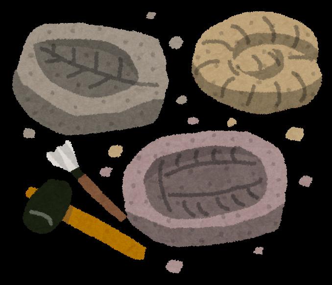 ... 葉っぱの化石のイラストです