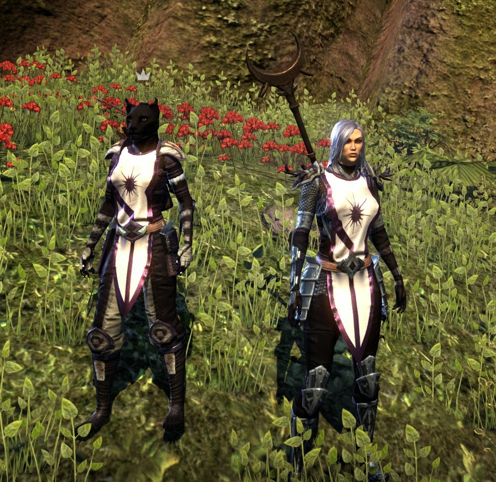 Explorers Of Tamriel Guild Checking Out The Guild Tabards