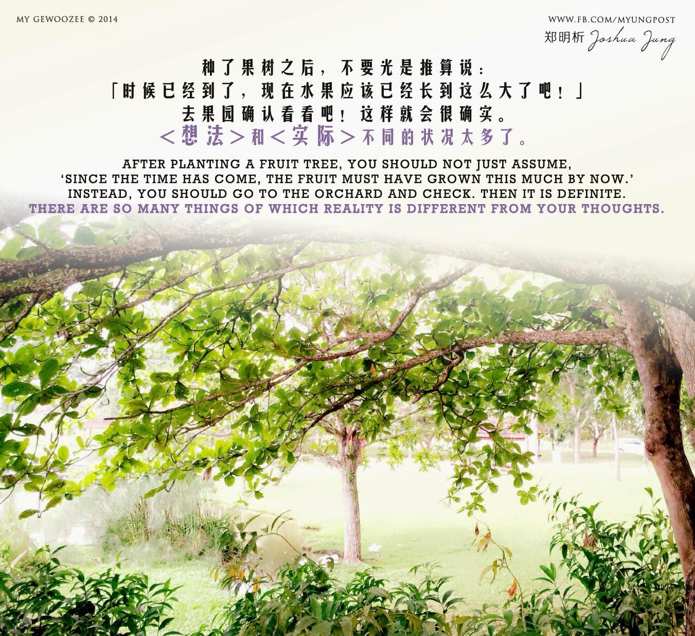 郑明析,摄理,月明洞,果树,果园,Joshua Jung, Providence, Wolmyeong Dong, Fruit tree, Orchard