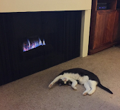 Sophie and her fireplace