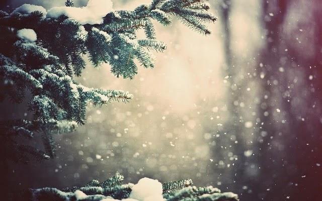 ảnh nền mùa đông đẹp cho pc