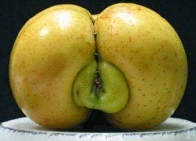 HOW APPLE BECOME HOT | FUNNY FRUIT PICTURE OF FRUIT IN USA