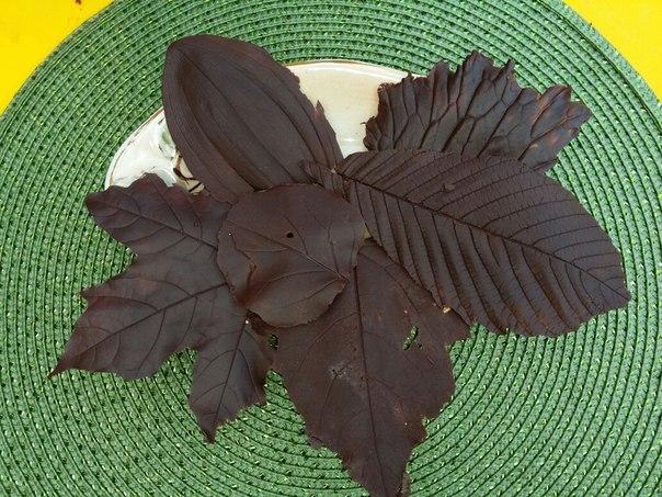 шоколадые листья своими руками