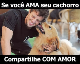Compartilhe se ama seu cachorro