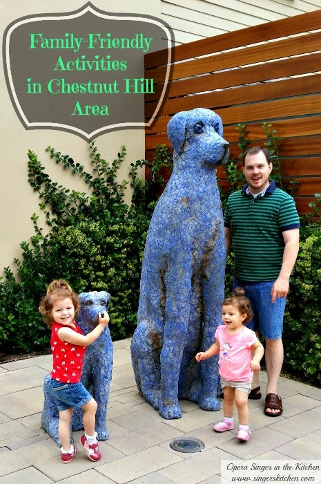 family-friendly activities in chestnut hill area + giveaway