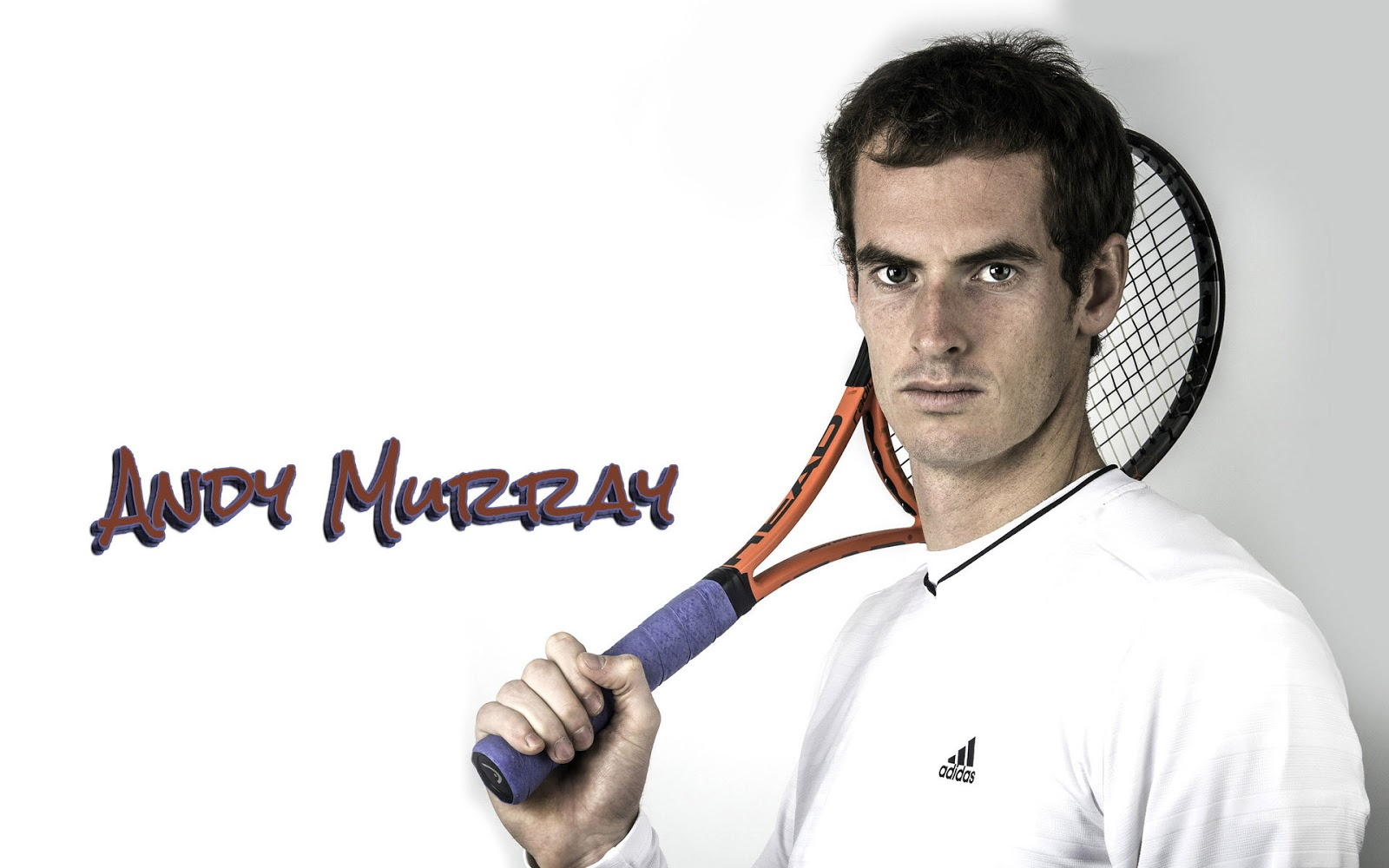 Andy murray wallpapers sports wallpapers andy murray wallpaper voltagebd Image collections