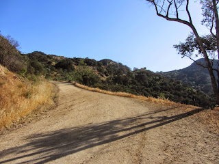 View south on North Trail at the junction with of Toyon Trail, Griffith Park