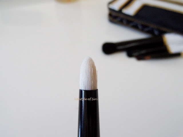 Mac 219 SE- Pencil Brush