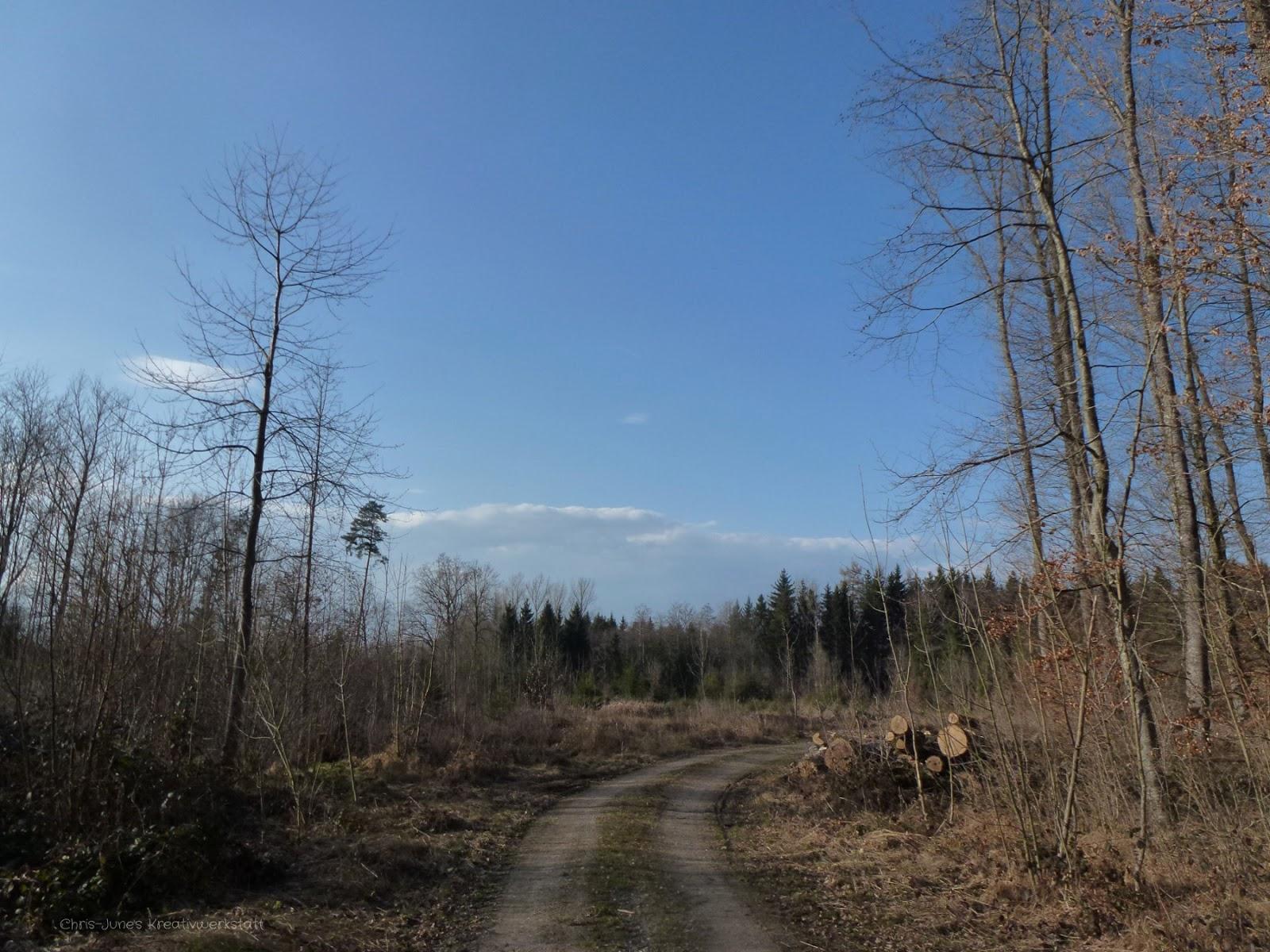 Waldweg2 - März