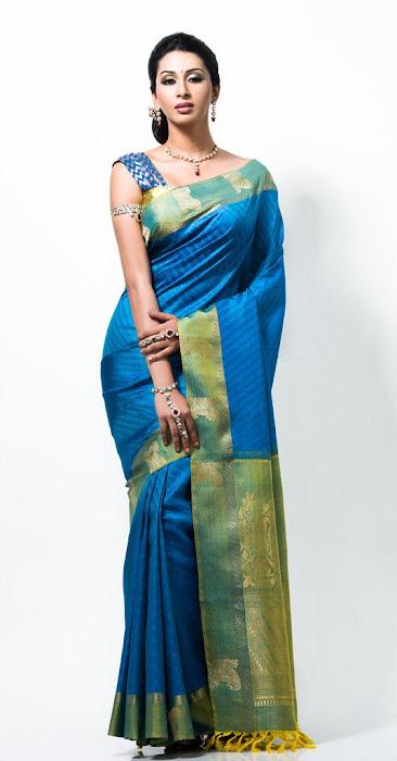gayathiri wonderful saree ad collections 2012 latest photos