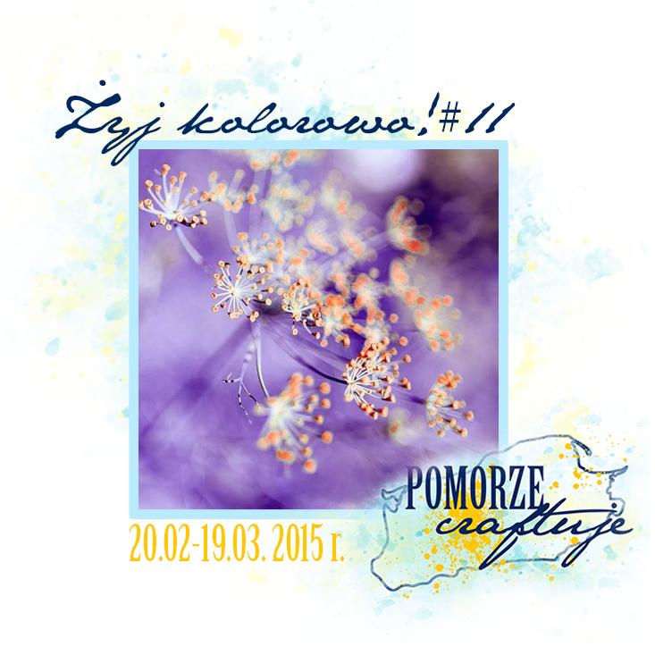 http://pomorze-craftuje.blogspot.ie/2015/02/zyj-kolorowo-11-czy-to-juz-wiosna.html